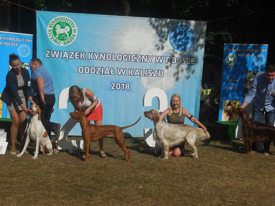 ZURI z Tachejow best of breed